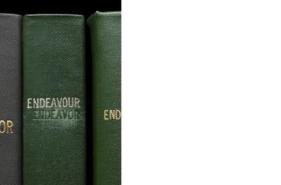 endeavour1.jpg